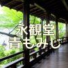京都で青もみじや苔が撮れる撮影スポット 永観堂