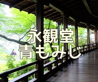 京都・青もみじと苔の撮影スポット 永観堂