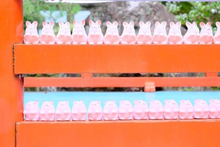 京都撮影スポット岡崎神社のうさぎみくじ