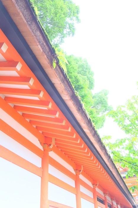フォトジェニックな下鴨神社写真朱色の建物と新緑