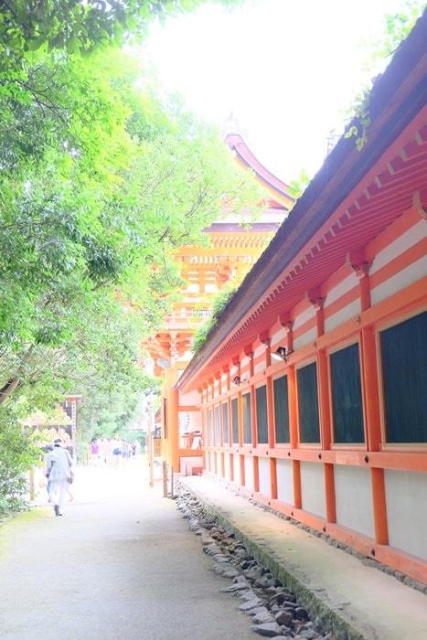 フォトジェニックな下鴨神社写真 朱色の建物と新緑