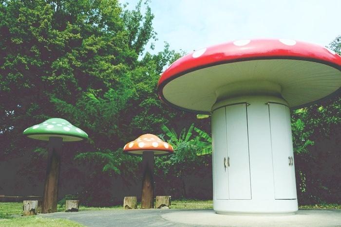 フォトジェニックな京都植物園のきのこ文庫