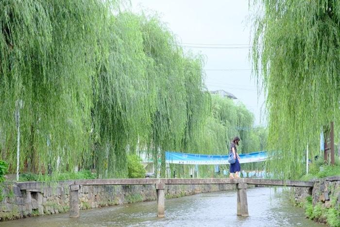 フォトジェニックな祇園白川周辺