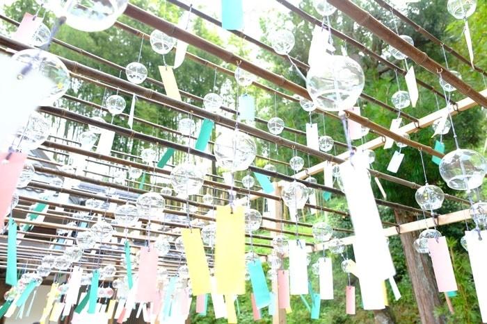 フォトジェニックな正寿院の風鈴まつり