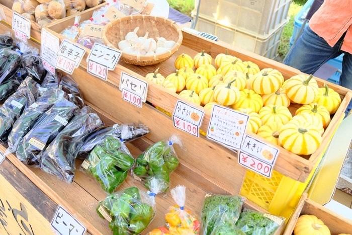 フォトジェニックな上賀茂神社の手作り市