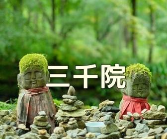 京都・お寺や神社の撮影スポット 圓光寺