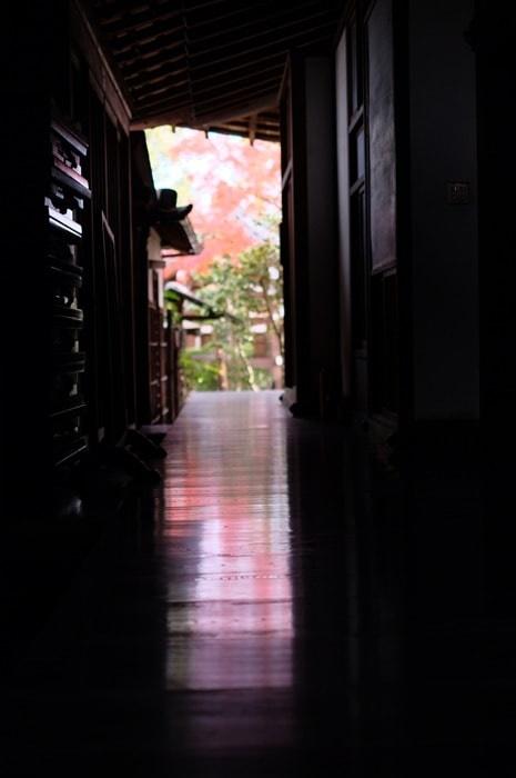 達磨寺の混雑とおすすめの時期