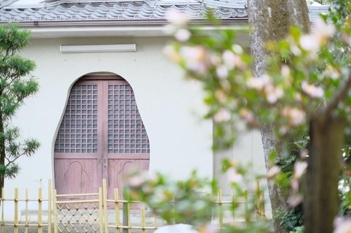 フォトジェニックな達磨寺