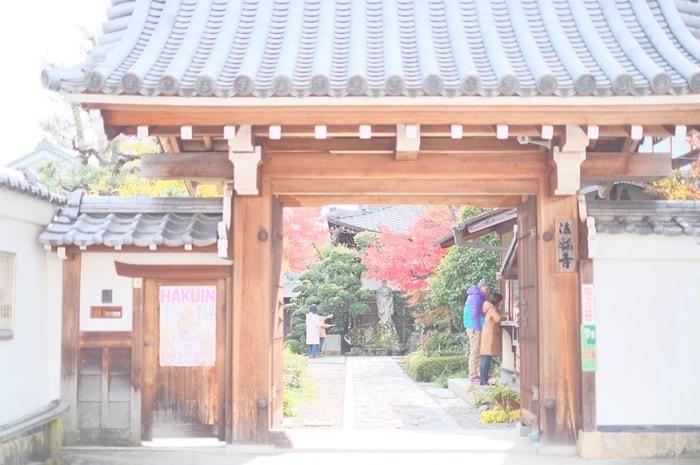 京都の撮影スポット 達磨寺とは?
