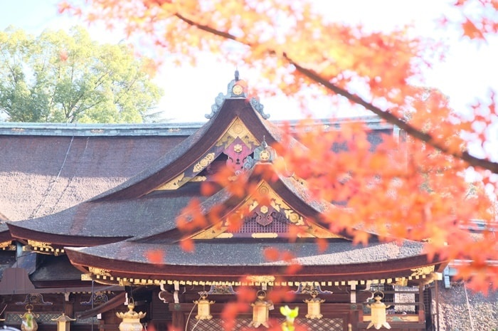 北野天満宮の紅葉 撮影スポット