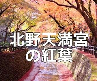 京都・紅葉の撮影スポット 北野天満宮