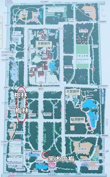 京都御所 梅林へのアクセス
