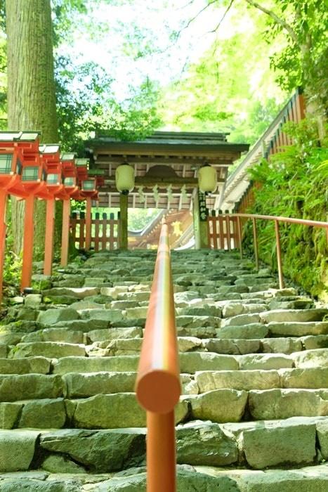 貴船神社の青もみじと苔の撮影スポット