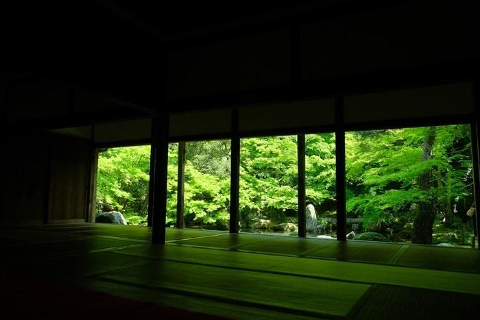 京都青もみじの撮影スポット・蓮華寺