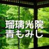 京都青もみじの撮影スポット・瑠璃光院