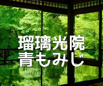 京都・苔と青もみじの撮影スポット・瑠璃光院