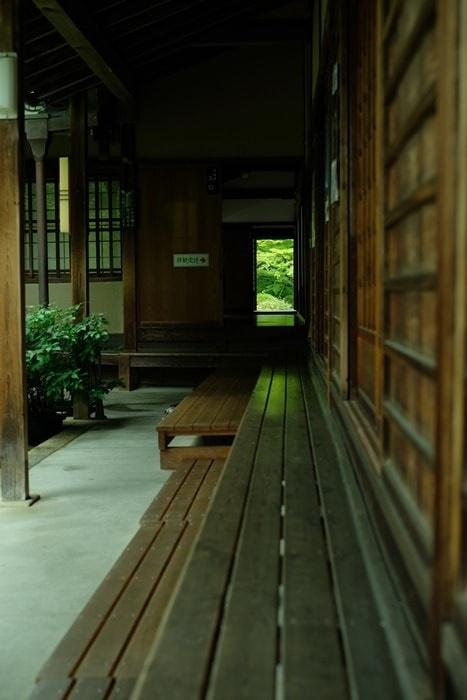 源光庵の青もみじの撮影スポット