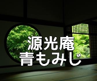 京都・青もみじと苔の撮影スポット・源光庵