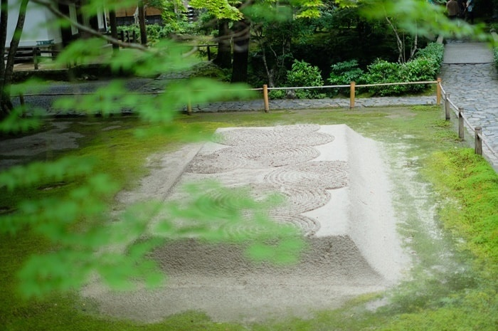 法然院の白砂檀