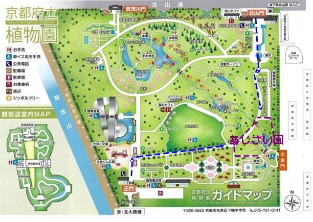 京都府立植物園 あじさいマップ