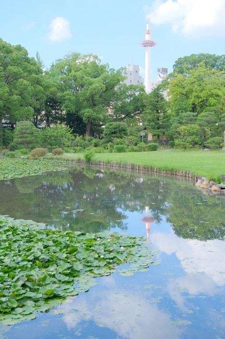 京都タワー撮影スポット(渉成園蓮池)