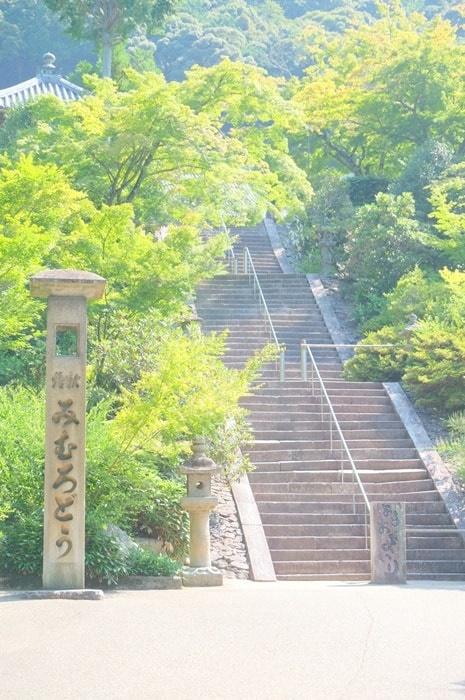 三室戸寺の蓮の撮影スポットへのアクセス