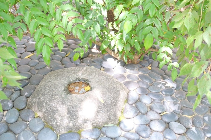 京都 フォトジェニック神社 六角堂