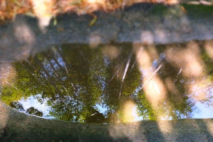 竹の径撮影スポット