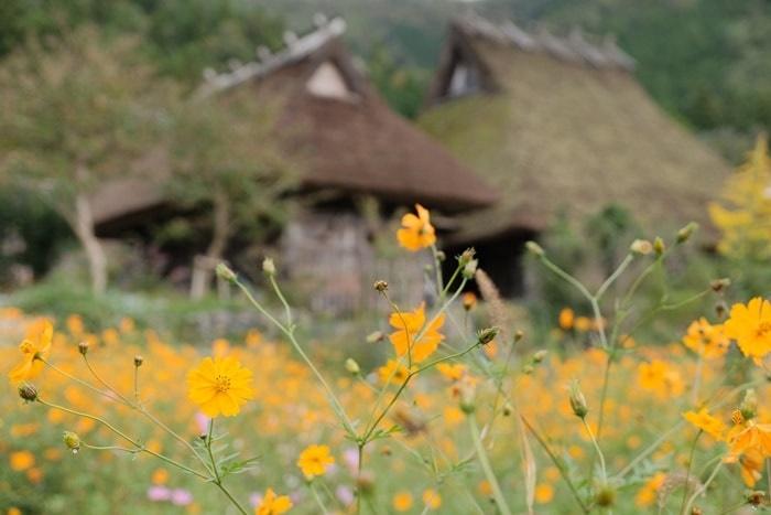 京都ノスタルジックな撮影スポット・美山かやぶきの里