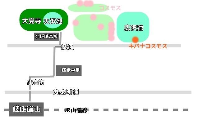 嵯峨野コスモスの咲くスポットへのアクセス