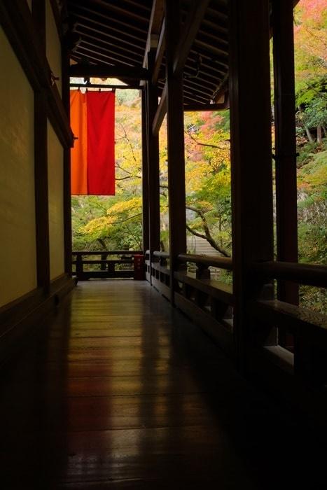 永観堂 紅葉フォトジェニックな撮影スポット 床