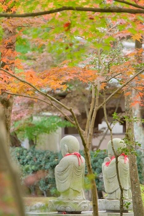 永観堂 フォトジェニックな紅葉の撮影スポット