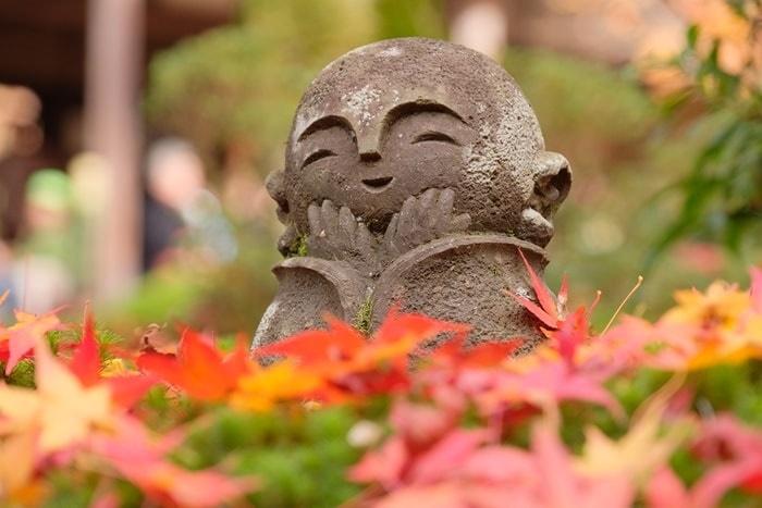 京都紅葉の撮影スポット圓光寺