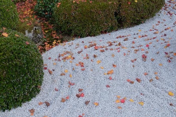 フォトジェニックな圓光寺の紅葉の撮影スポット