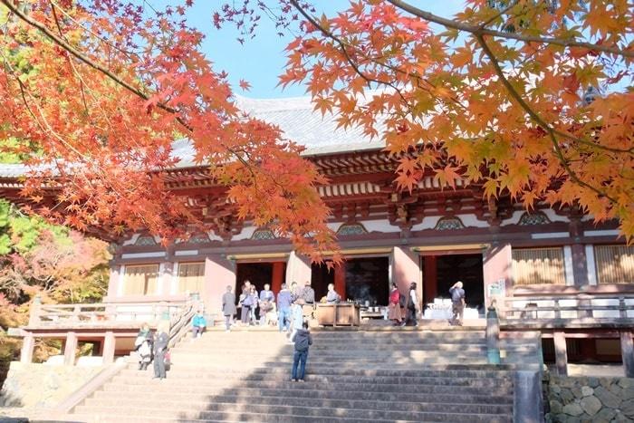 フォトジェニックな神護寺の紅葉撮影スポット