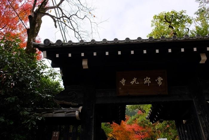 常寂光寺の紅葉撮影スポット