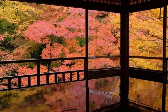 京都 紅葉の撮影スポット瑠璃光院