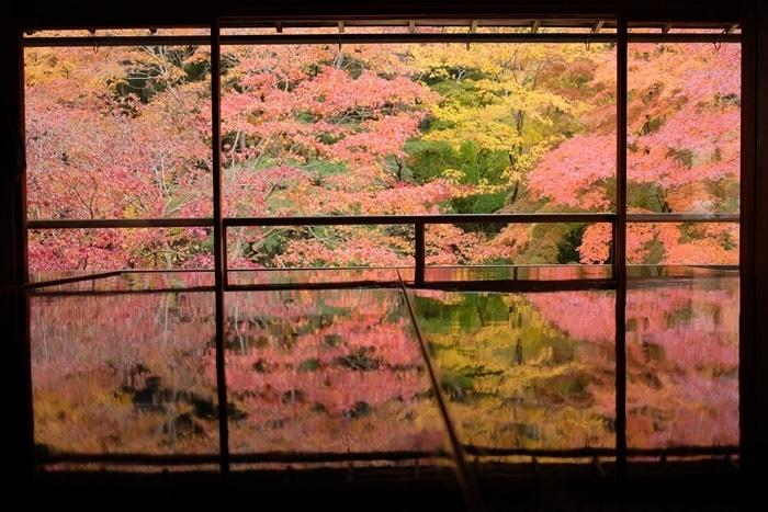 瑠璃光院のフォトジェニックな紅葉撮影スポット