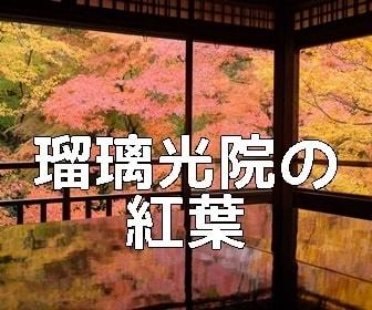 京都・紅葉の撮影スポット・瑠璃光院