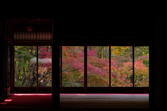 京都の紅葉撮影スポット 天授庵