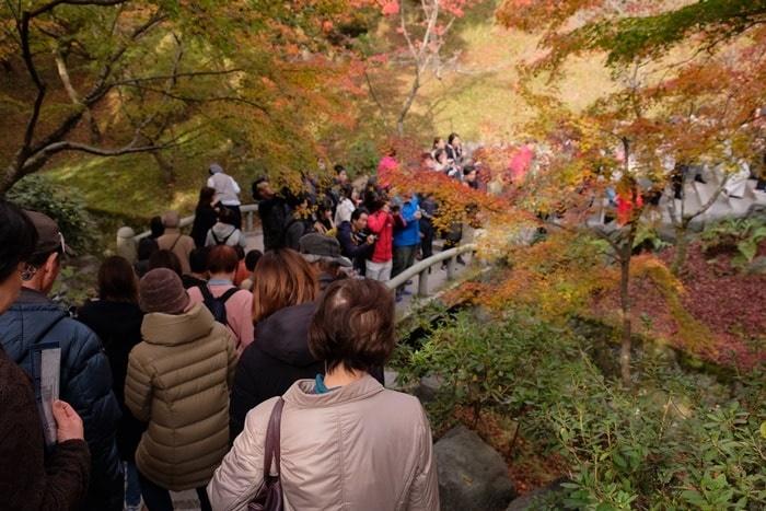 東福寺紅葉時期の混雑