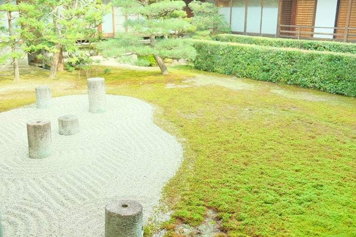 東福寺・苔の撮影スポット
