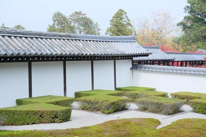 東福寺苔の撮影スポット