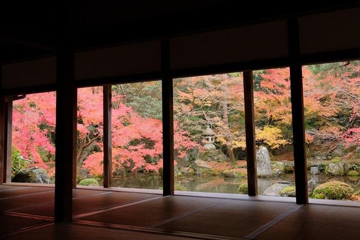 京都紅葉の撮影スポット 蓮華寺