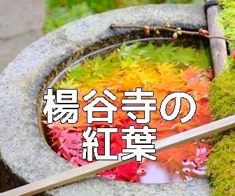京都・紅葉の撮影スポット 楊谷寺