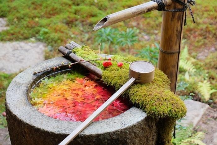 京都紅葉の撮影スポット 楊谷寺の手水鉢