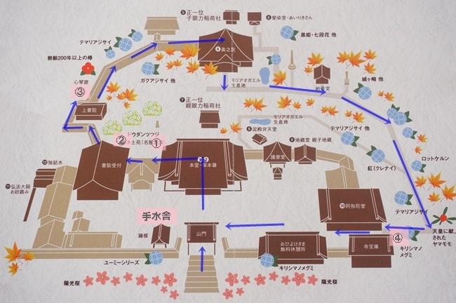 楊谷寺の紅葉・手水鉢撮影スポットマップ