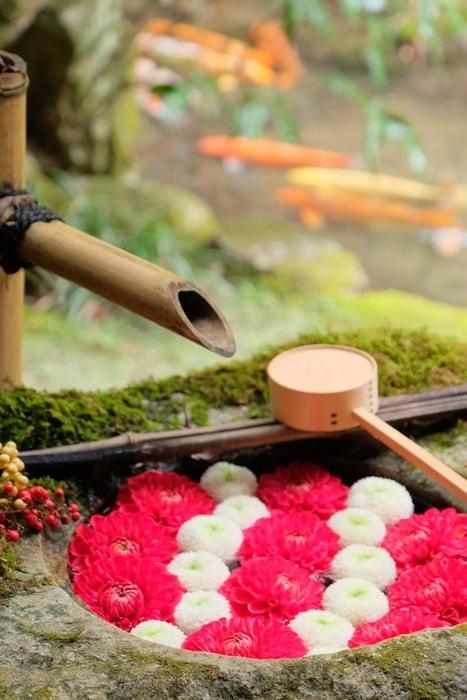 楊谷寺の花手水