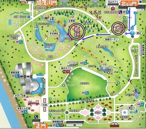 京都府立植物園 梅林へのアクセスマップ
