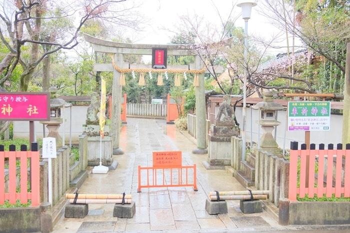 嵐電 車折神社駅ホームから撮影した車折神社の鳥居と桜